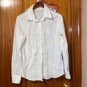 Burberry cotton button down shirt size xl